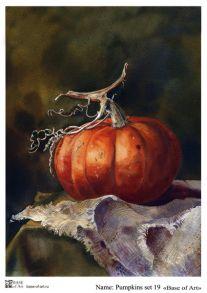 Pumpkins set 19