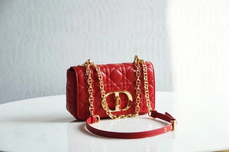 Dior Montaigne30 20 cm