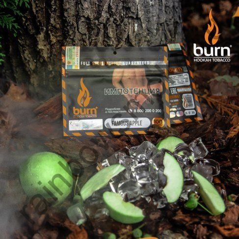 Burn 100 гр - Famous Apple (Знаменитое Яблоко)