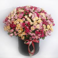 101 кустовая роза микс в коробке