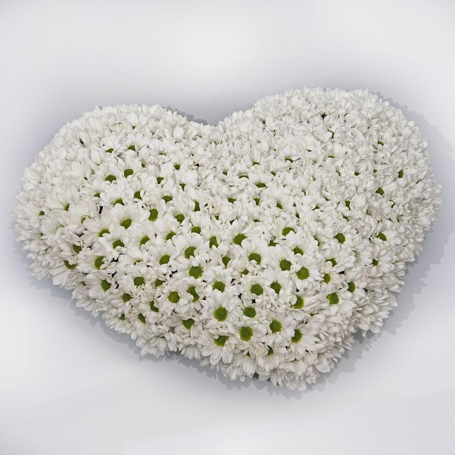 Большое сердце из хризантем