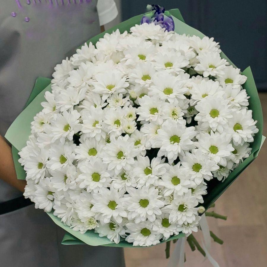 15 белых хризантем в красивой упаковке