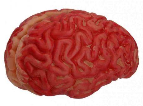 Мозги кровавые