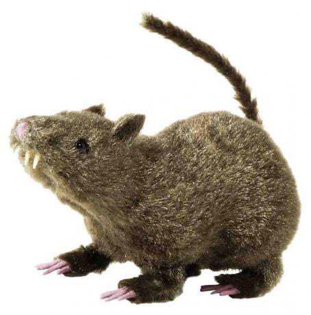 Крыса Волосатая (38 см)
