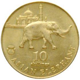 Азиатский слон 10 шиллингов Биафра 2017   UNC