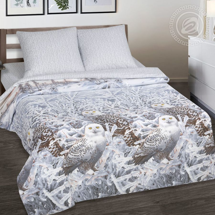 «Хранители снов» (DE LUXE) постельное белье Поплин 2-х спальный с евро