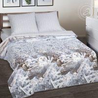 «Хранители снов» (DE LUXE) постельное белье Поплин Семейный