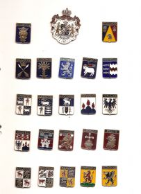 Набор значков Швеция (22 знака Лен(Провинций)+Герб)