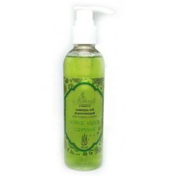 Shokonat - Шампунь silk укрепляющий для жирных волос любого типа ЧЕРНОЕ МЫЛО & СПИРУЛИНА. 500мл
