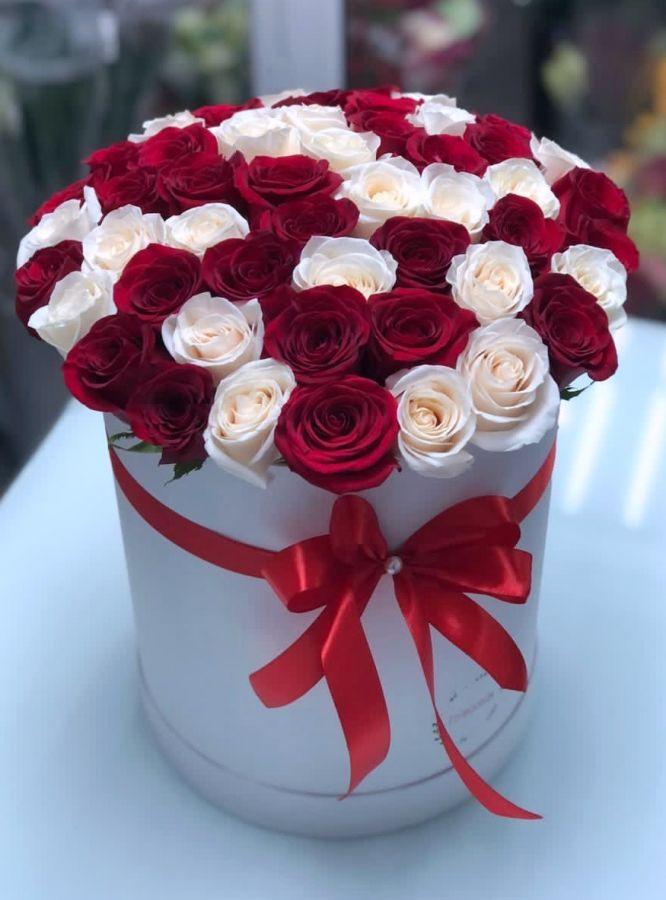 51 бело-красная роза в шляпной коробке