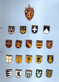 Набор значков Норвегия  (19 знаков Провинций+ Герб страны)