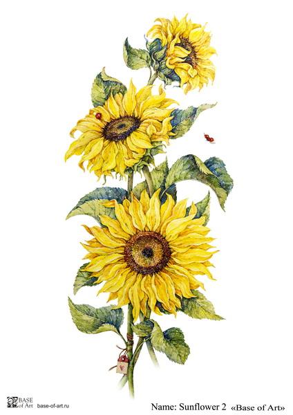 Декупажная карта Base of art, 20*30 см, Sunflower 2