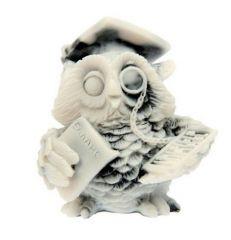 Умная сова - сувенир бухгалтеру