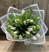 25 белых тюльпанов в красивой упаковке