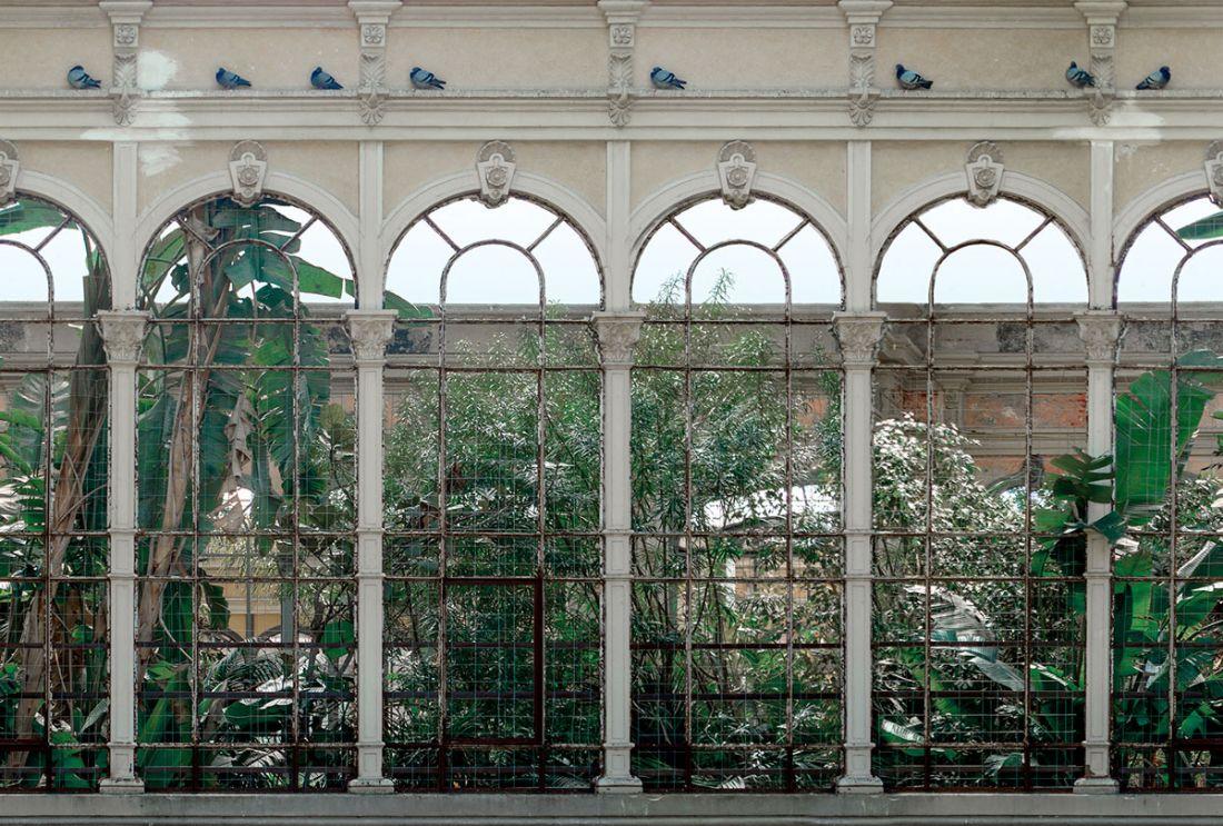 Barelonian greenhouse