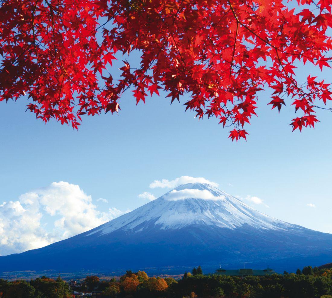 Гора Фудзияма 10253-М