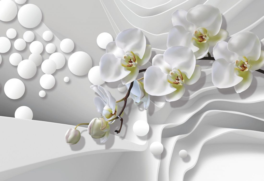 Белые орхидеи 6-189