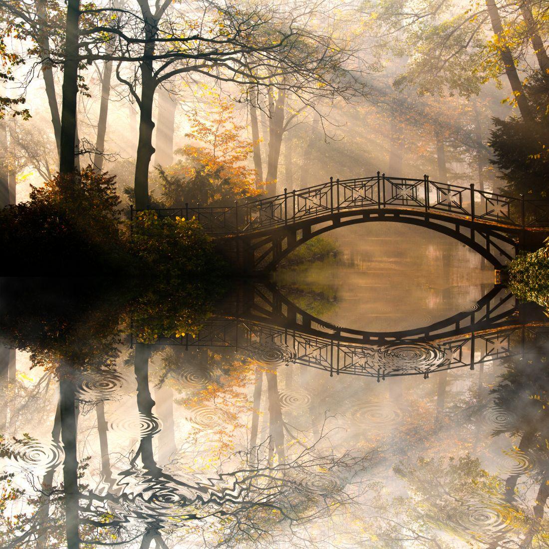 Мост в осеннем лесу 10-260