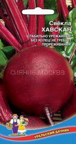 Свекла Хавская (Уральский Дачник)