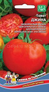 Томат Джина (Уральский Дачник)
