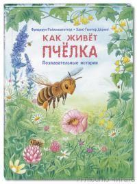 Как живет пчелка