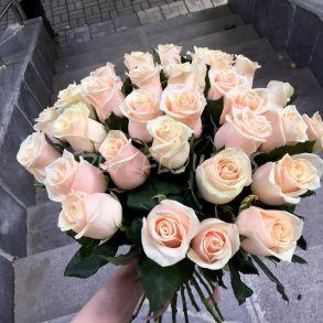 Кремовые розы «Талея»