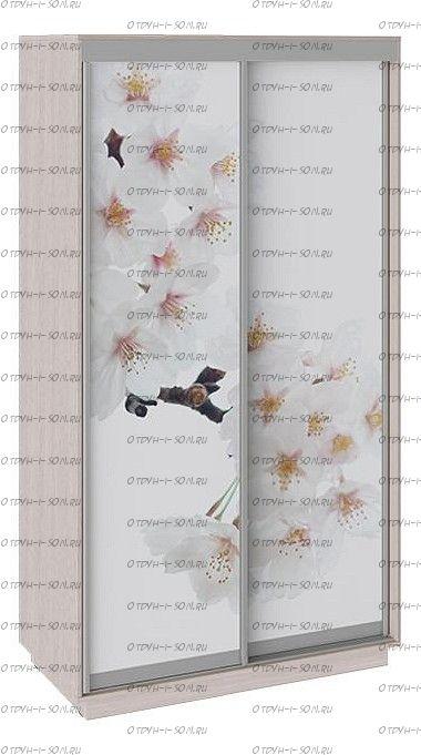 Шкаф-купе 2-х дверный Румер СШК 1.120.60-25 Ясень шимо, Фотопечать Вишня