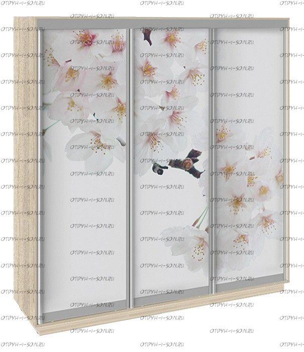 Шкаф-купе 3-х дверный Румер СШК 1.210.70-35 (2100x600x2200) Дуб сонома, Фотопечать Вишня
