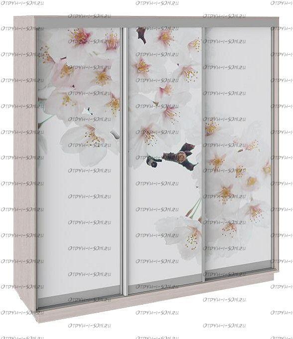 Шкаф-купе 3-х дверный Румер СШК 1.210.70-35 Ясень шимо, Фотопечать Вишня