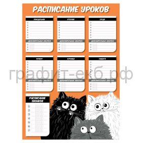 Расписание уроков А3 Феникс+ ассорти 56932/56935