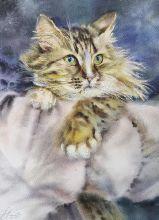 Почтовая открытка Акварельные котики 1
