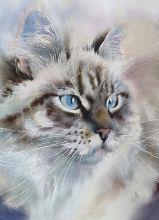 Почтовая открытка Акварельные котики 2