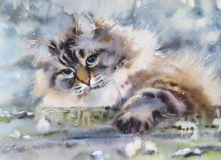 Почтовая открытка Акварельные котики 4