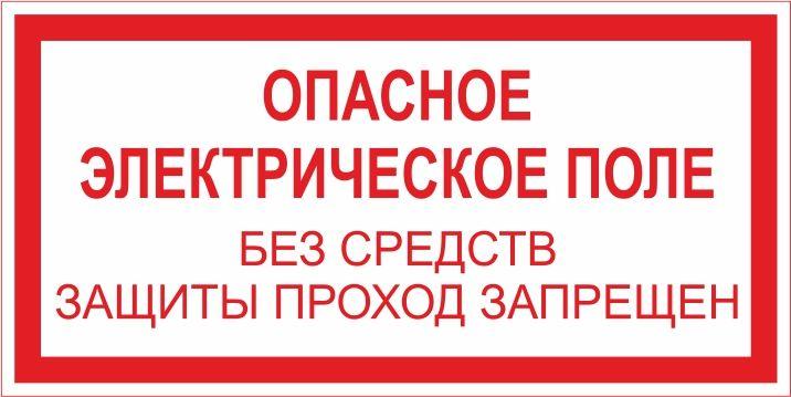 """T10 """"Опасное электрическое поле"""""""