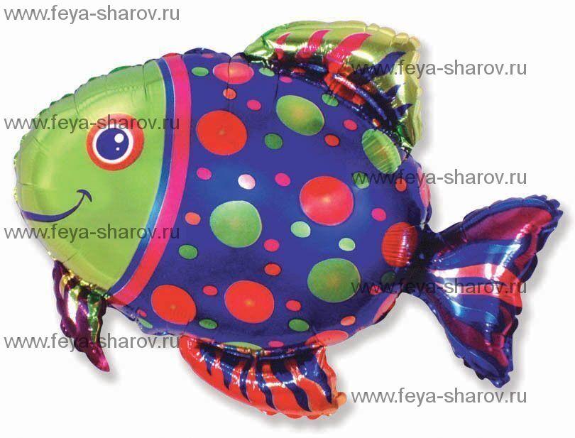 Шар Рыба Пятнистая 72х85 см