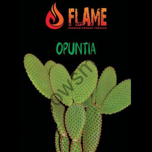 Flame 100 гр - Opuntia (Опунция)