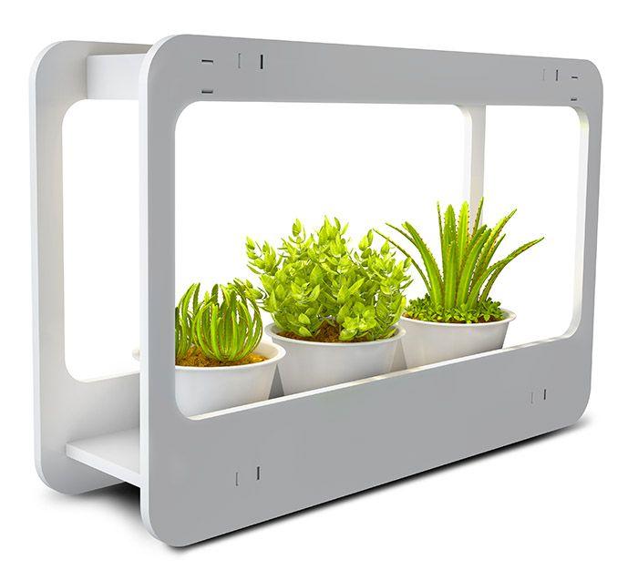 Светильник для растений Jazzway 14W(850lm) PMG 002