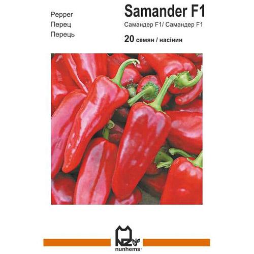 """Самандер"" F1 (10 семян) от Nunhems"