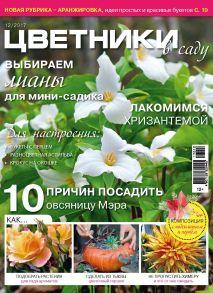 Цветники в саду №12/2017