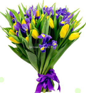 Букет Желтые тюльпаны с ирисами