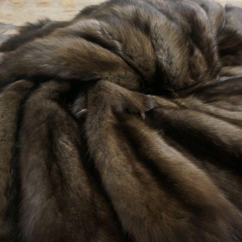 Продажа шкур из соболя в Москве