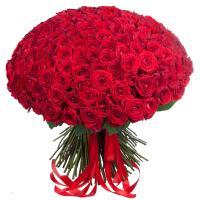 101 красная роза 70 см